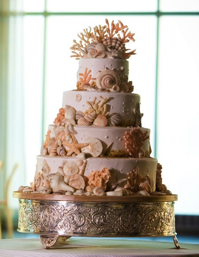 Chocolate Shells Cake - Wedding Cake